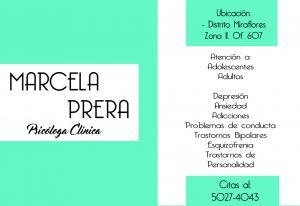 Psicóloga Distrito Miraflores